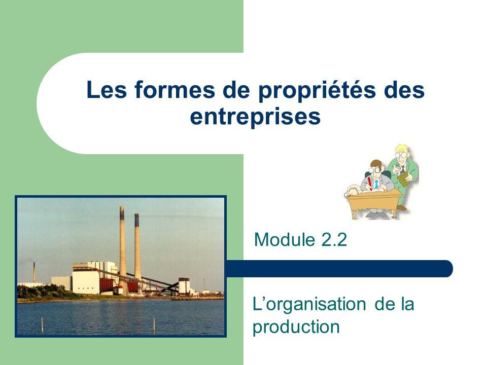 Les formes de propriétés des entreprises Module 2.2 Lorganisation de la production