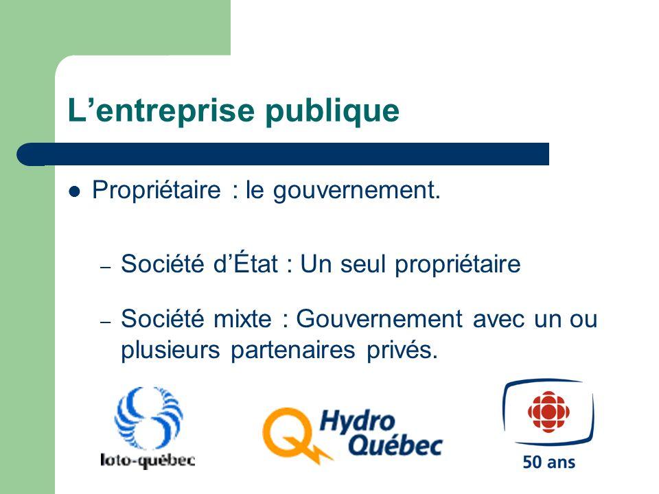Lentreprise publique Propriétaire : le gouvernement. – Société dÉtat : Un seul propriétaire – Société mixte : Gouvernement avec un ou plusieurs parten