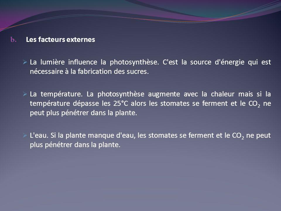 b. Les facteurs externes La lumière influence la photosynthèse. C'est la source d'énergie qui est nécessaire à la fabrication des sucres. La températu