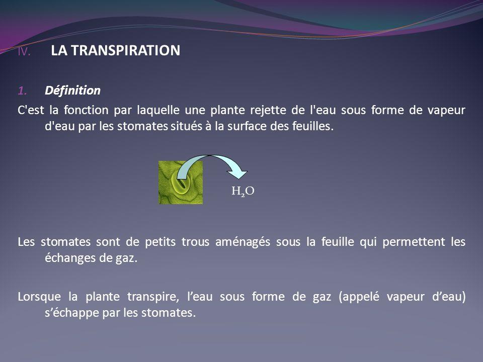 IV. LA TRANSPIRATION 1. Définition C'est la fonction par laquelle une plante rejette de l'eau sous forme de vapeur d'eau par les stomates situés à la