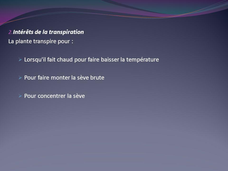 2. Intérêts de la transpiration La plante transpire pour : Lorsqu'il fait chaud pour faire baisser la température Pour faire monter la sève brute Pour
