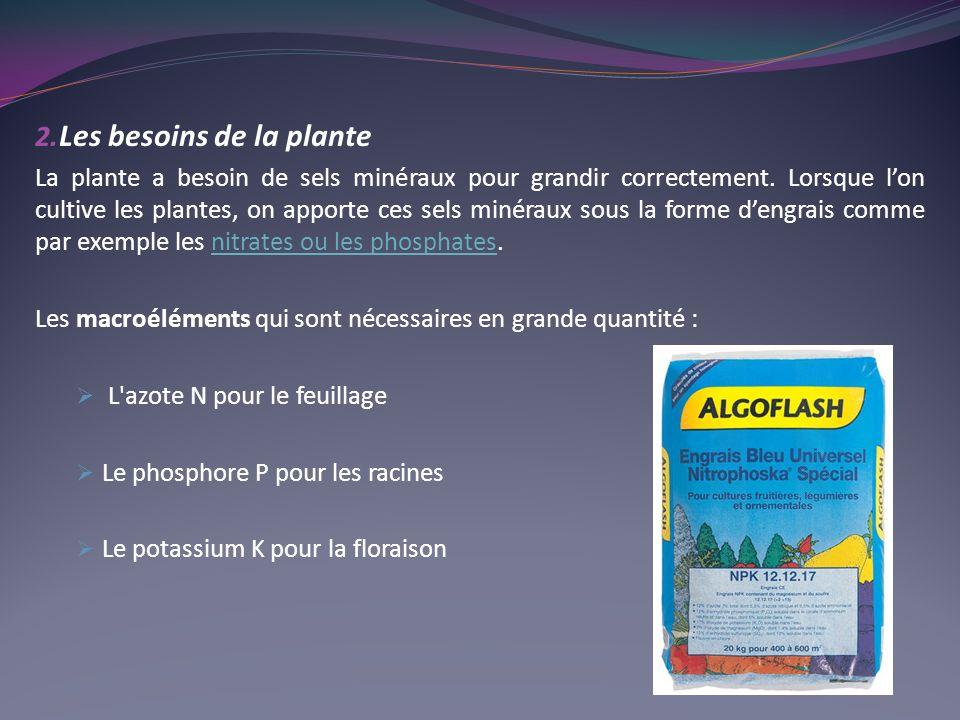 2. Les besoins de la plante La plante a besoin de sels minéraux pour grandir correctement. Lorsque lon cultive les plantes, on apporte ces sels minéra
