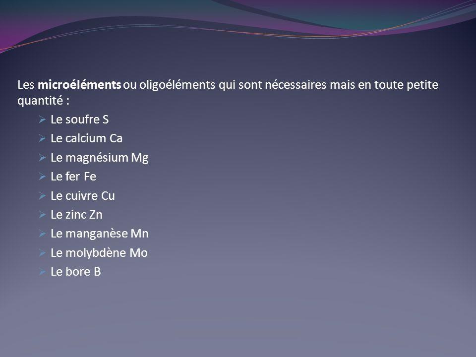 Les microéléments ou oligoéléments qui sont nécessaires mais en toute petite quantité : Le soufre S Le calcium Ca Le magnésium Mg Le fer Fe Le cuivre