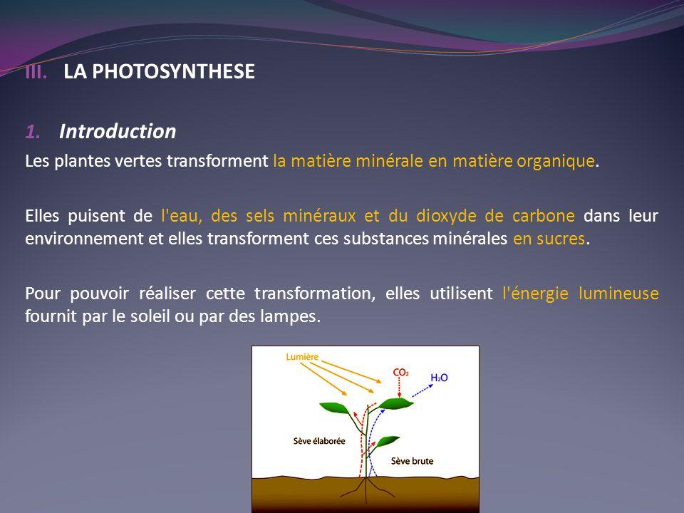 III. LA PHOTOSYNTHESE 1. Introduction Les plantes vertes transforment la matière minérale en matière organique. Elles puisent de l'eau, des sels minér