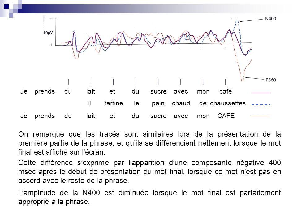 On remarque que les tracés sont similaires lors de la présentation de la première partie de la phrase, et quils se différencient nettement lorsque le mot final est affiché sur lécran.