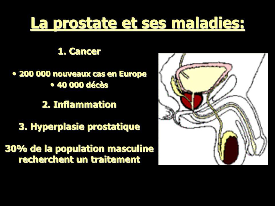 Il y a deux organes inutiles: la prostate et la « Il y a deux organes inutiles: la prostate et la présidence de la République « présidence de la République « Georges CLEMENCEAU