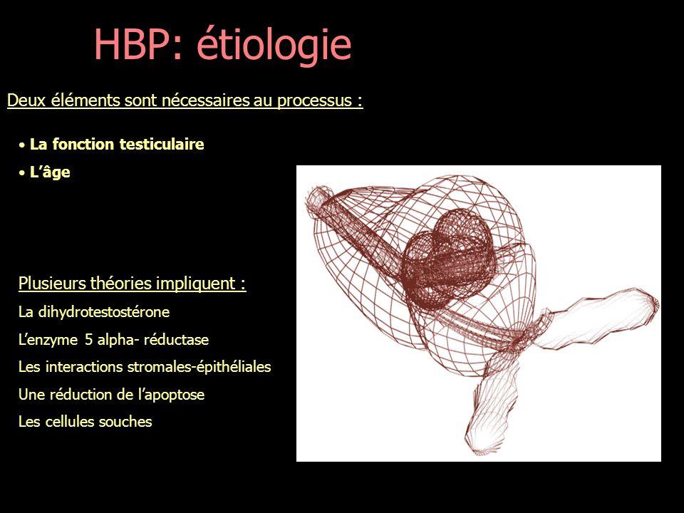 PHYSIOPATHOLOGIE HBP: Physiopathologie