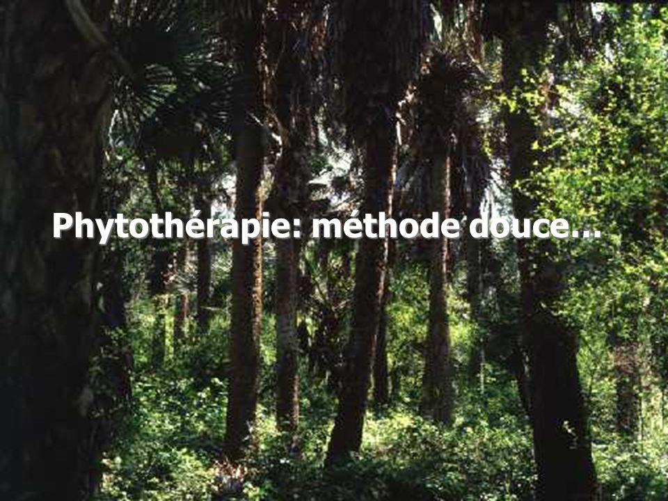 Les produits… Saw palmetto: petit palmier qui pousse spontanément en Floride et au Texas Saw palmetto: petit palmier qui pousse spontanément en Floride et au Texas Pygeum africanum: Variété de prunier qui pousse dans les montagnes dAfrique centrale Pygeum africanum: Variété de prunier qui pousse dans les montagnes dAfrique centrale Graines de courge: actifs grâce aux phytostérols que Graines de courge: actifs grâce aux phytostérols que contient le pépin de courge contient le pépin de courge Zinc en association: Protection de la prostate contre le vieillissement Zinc en association: Protection de la prostate contre le vieillissement Sélénium .