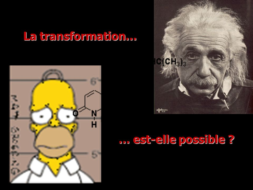 La transformation… … est-elle possible ?