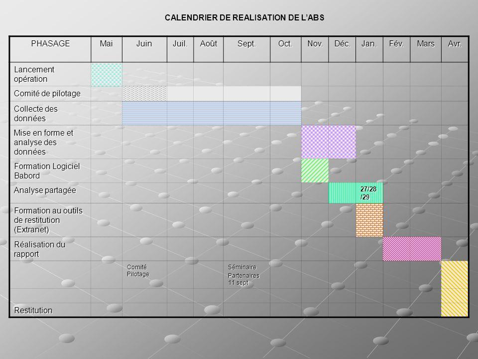 Les documents et outils Les groupes danalyses partagées produiront un document de synthèse qui pourra être diffusé auprès de lensemble des participants et partenaires intéressés Plusieurs outils informatiques seront remis au CCAS : BaBord (outil de suivi des données et indicateurs, cartographies), Radar (pour la géolocalisation), un site Extranet (comprenant les données mises en forme et les documents produits lors de létude)