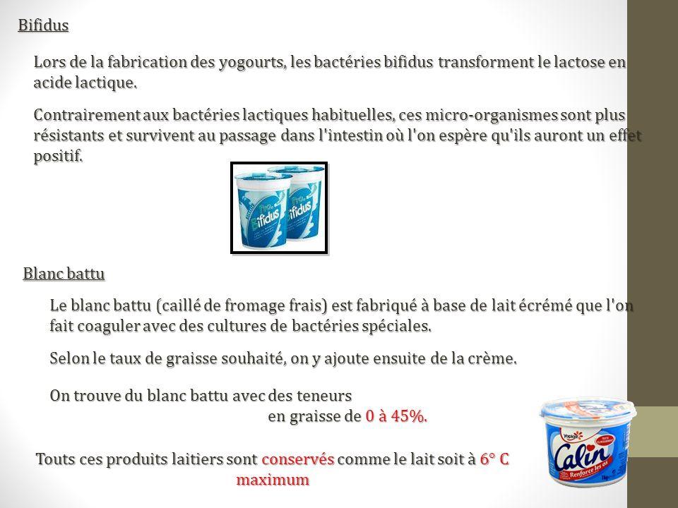 Bifidus Lors de la fabrication des yogourts, les bactéries bifidus transforment le lactose en acide lactique. Contrairement aux bactéries lactiques ha