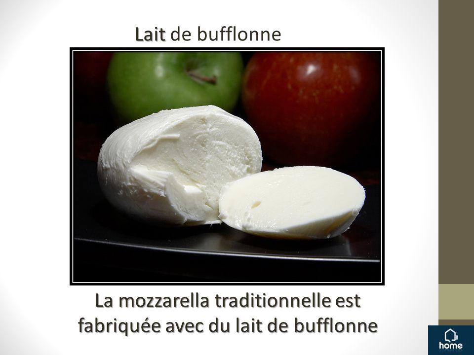 Lait Lait de bufflonne La mozzarella traditionnelle est fabriquée avec du lait de bufflonne
