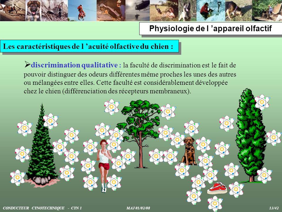 Physiologie de l appareil olfactif Les caractéristiques de l acuité olfactive du chien : discrimination qualitative : la faculté de discrimination est