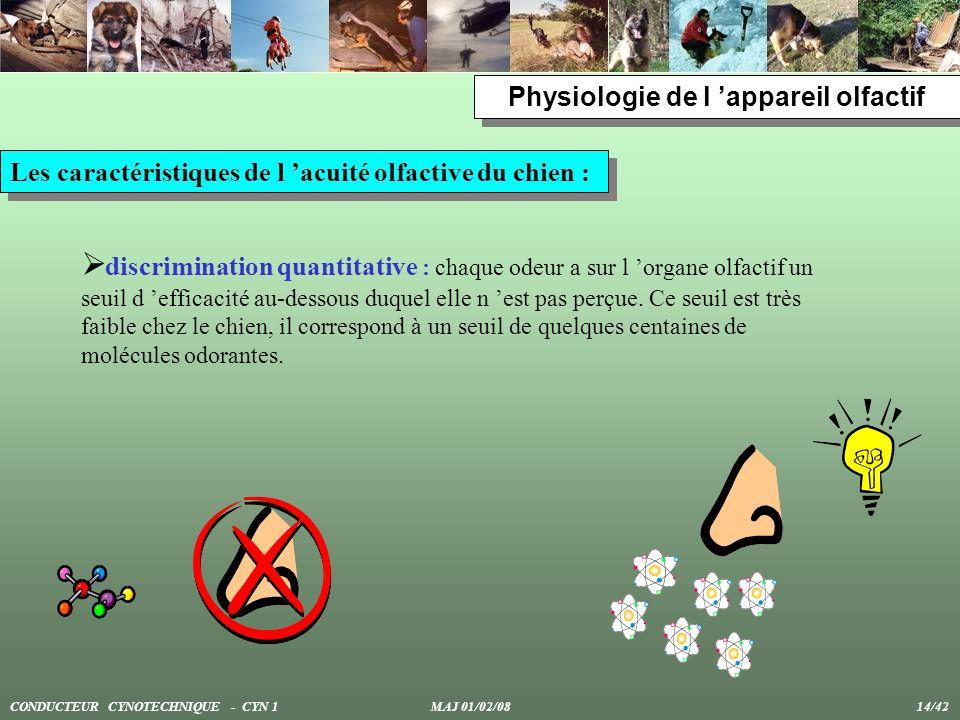 Physiologie de l appareil olfactif Les caractéristiques de l acuité olfactive du chien : discrimination quantitative : chaque odeur a sur l organe olf