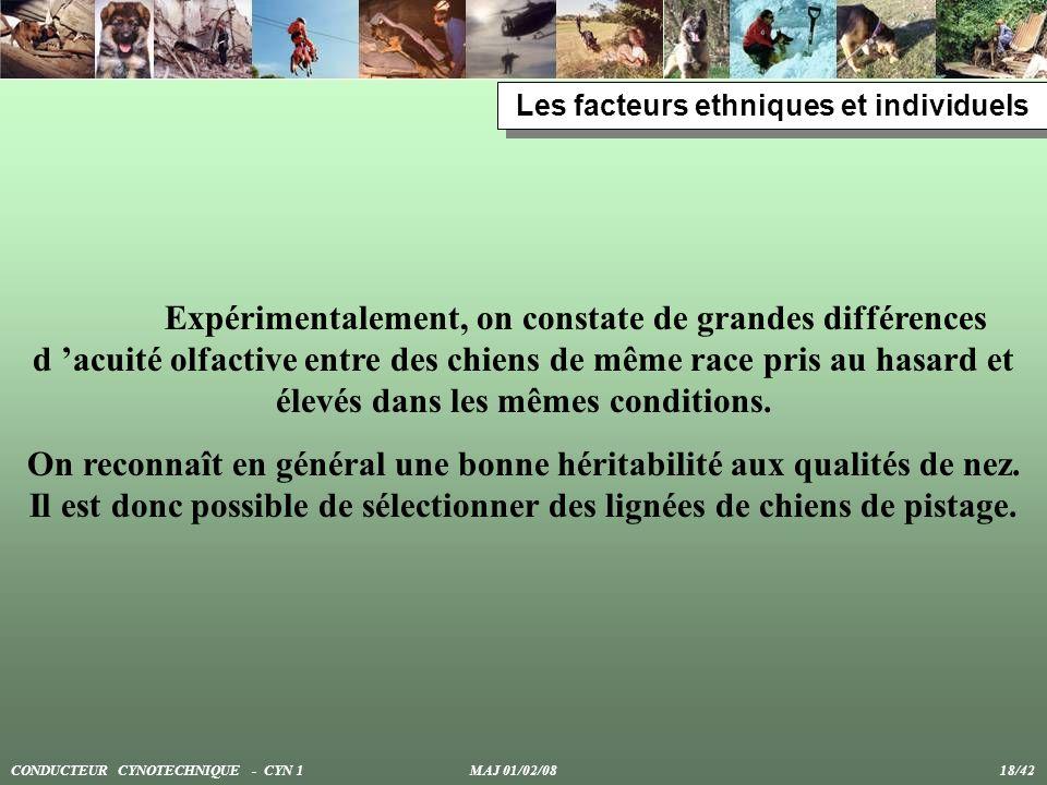 Les facteurs ethniques et individuels Expérimentalement, on constate de grandes différences d acuité olfactive entre des chiens de même race pris au h