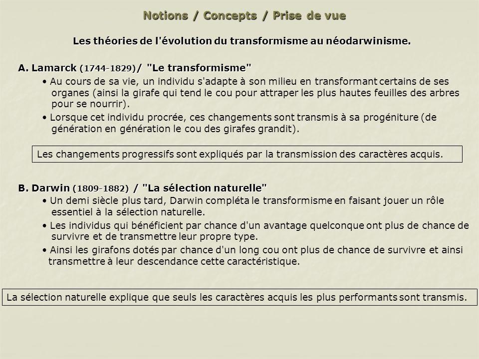 Notions / Concepts / Prise de vue Les théories de l évolution du transformisme au néodarwinisme (suite).