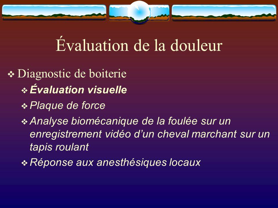 Évaluation de la douleur Diagnostic de boiterie Évaluation visuelle Plaque de force Analyse biomécanique de la foulée sur un enregistrement vidéo dun cheval marchant sur un tapis roulant Réponse aux anesthésiques locaux