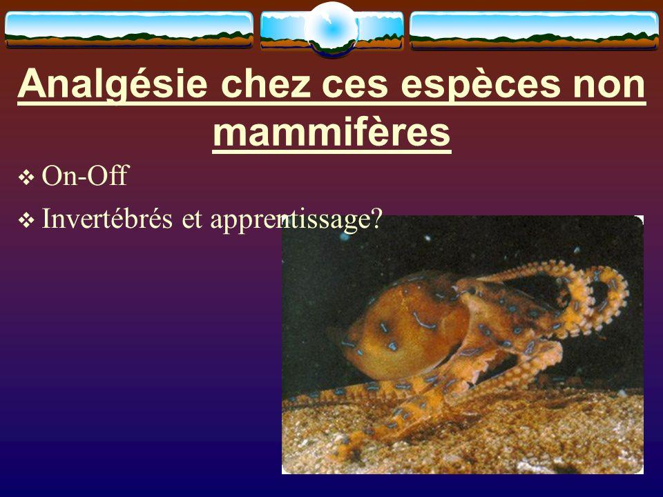 Analgésie chez ces espèces non mammifères On-Off Invertébrés et apprentissage?
