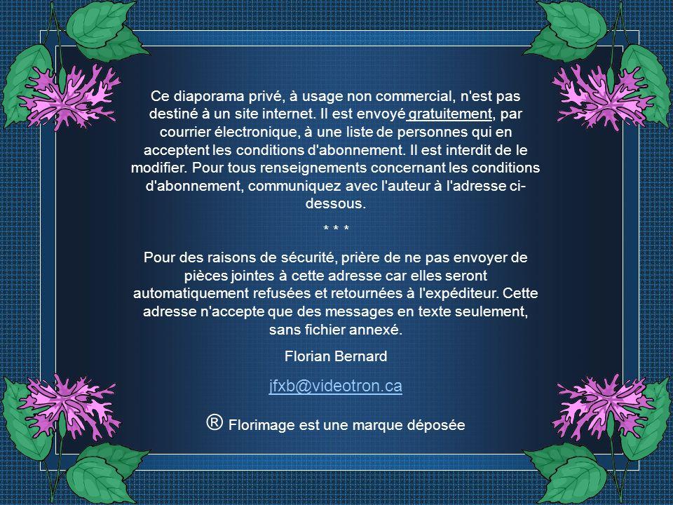 Création Florian Bernard Tous droits réservés – 2004 jfxb@videotron.ca