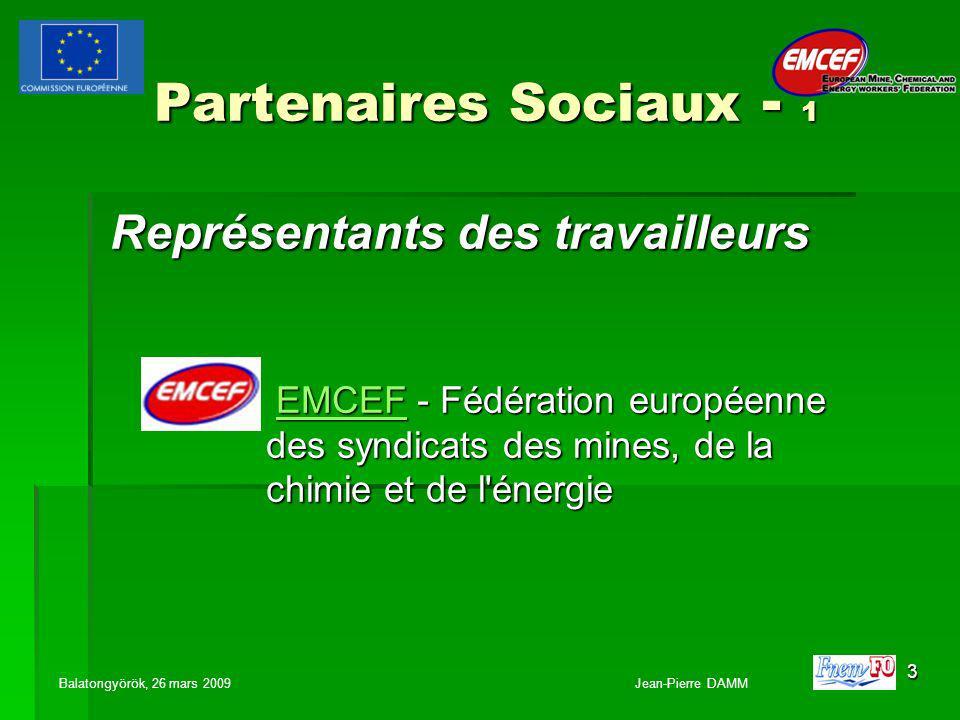 4 Partenaires Sociaux - 2 Représentants des employeurs EURACOAL Association européenne du charbon et du lignite EURACOAL Association européenne du charbon et du lignite EURACOAL EUROMINES - Association européenne des industries minières EUROMINES - Association européenne des industries minières EUROMINES IMA - Association européenne des minéraux industrielsIMA APEP - Association des producteurs européens de potasse U.E.