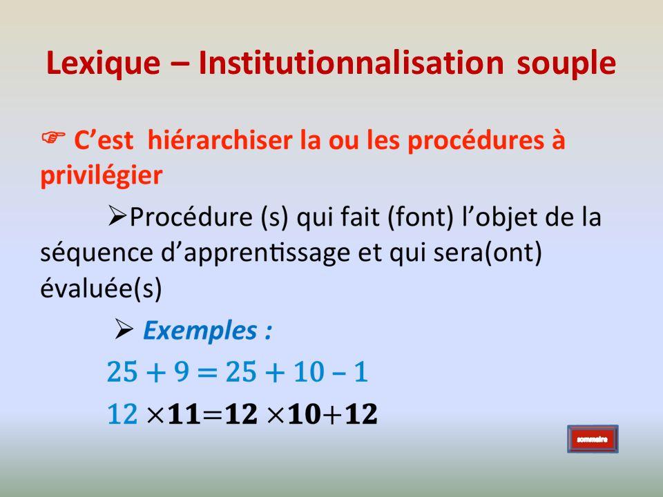 Lexique – Institutionnalisation souple