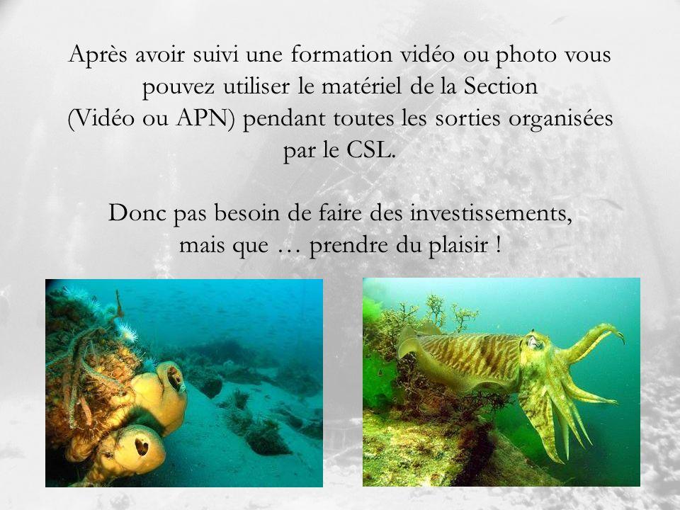 Après avoir suivi une formation vidéo ou photo vous pouvez utiliser le matériel de la Section (Vidéo ou APN) pendant toutes les sorties organisées par le CSL.