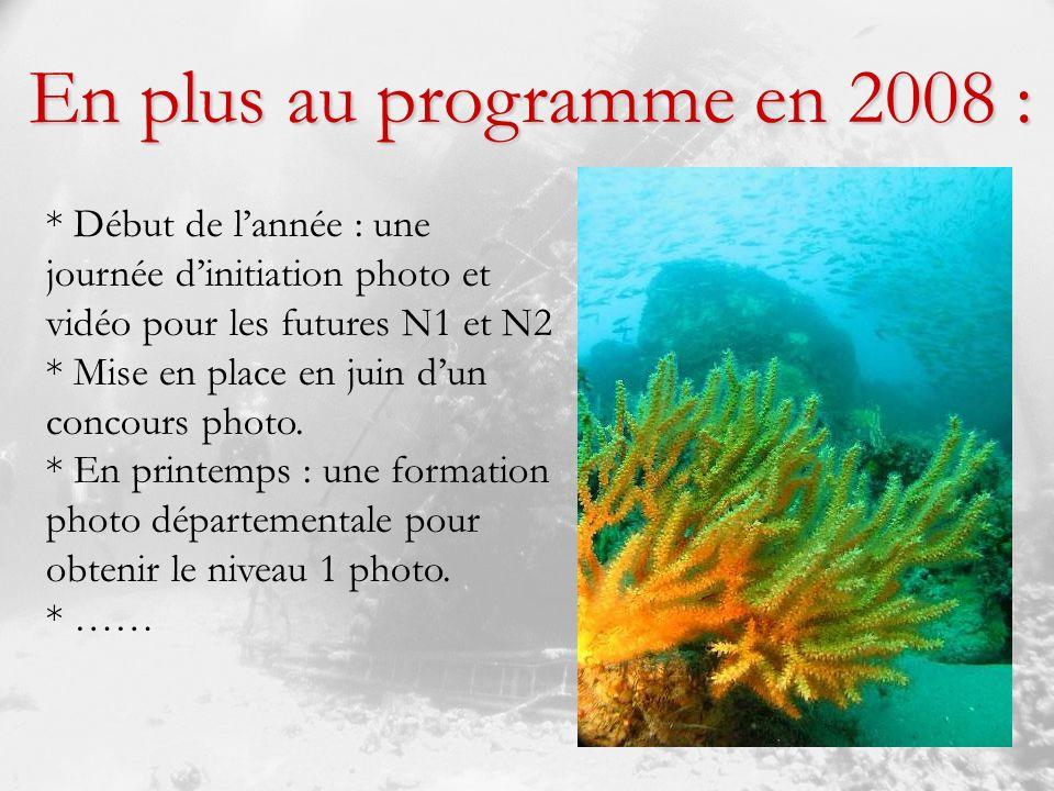 * Début de lannée : une journée dinitiation photo et vidéo pour les futures N1 et N2 * Mise en place en juin dun concours photo.