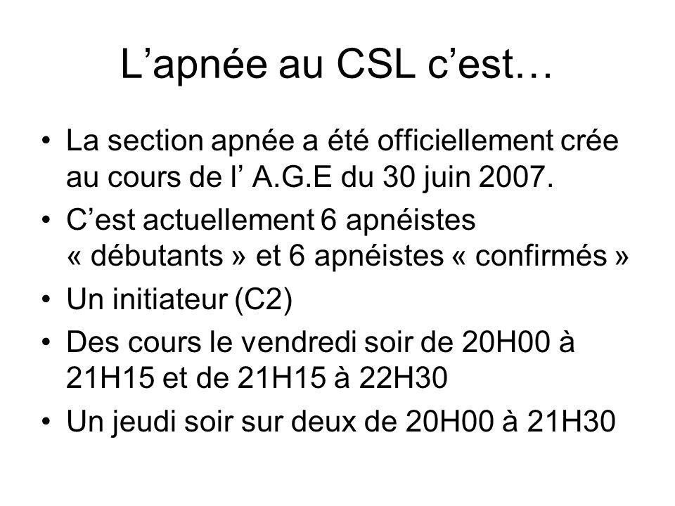 Lapnée au CSL cest… La section apnée a été officiellement crée au cours de l A.G.E du 30 juin 2007. Cest actuellement 6 apnéistes « débutants » et 6 a
