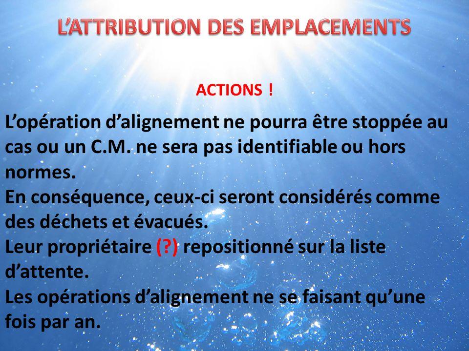 ACTIONS . Les C.M.