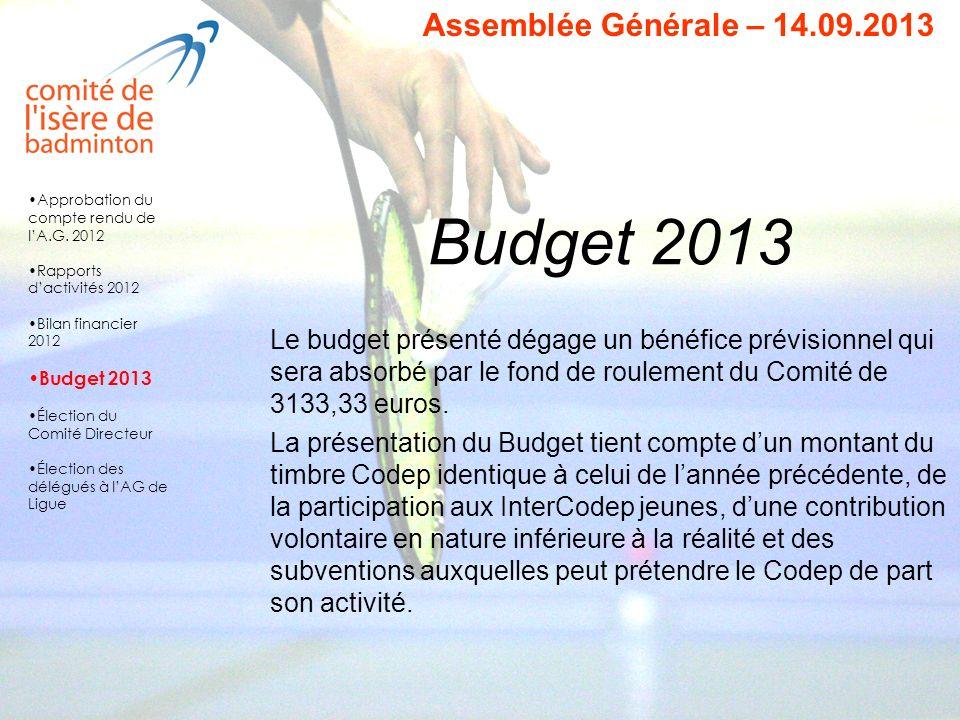Budget 2013 Le budget présenté dégage un bénéfice prévisionnel qui sera absorbé par le fond de roulement du Comité de 3133,33 euros. La présentation d