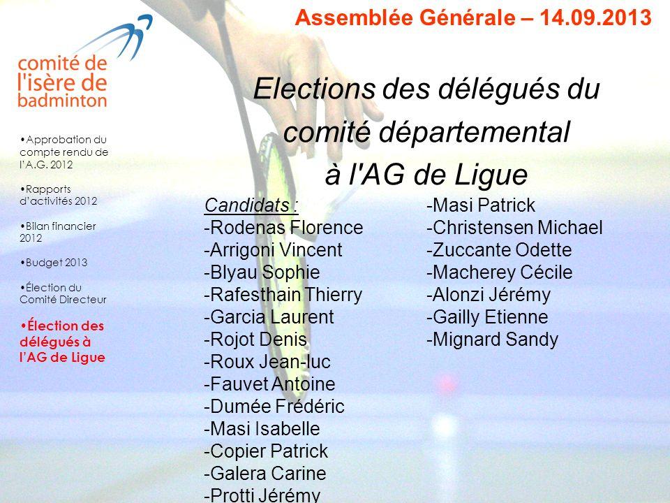 Elections des délégués du comité départemental à l'AG de Ligue Assemblée Générale – 14.09.2013 Candidats : -Rodenas Florence -Arrigoni Vincent -Blyau
