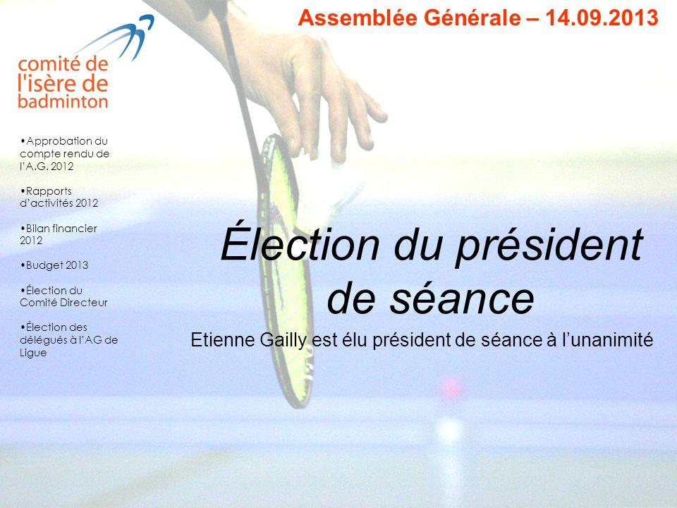 Élection du président de séance Etienne Gailly est élu président de séance à lunanimité Approbation du compte rendu de lA.G. 2012 Rapports dactivités