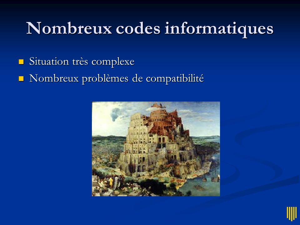 Nombreux codes informatiques Situation très complexe Situation très complexe Nombreux problèmes de compatibilité Nombreux problèmes de compatibilité
