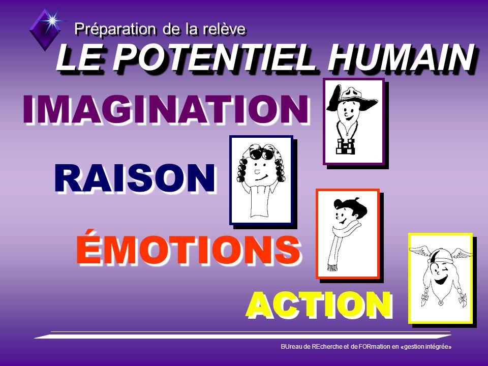 Préparation de la relève BUreau de REcherche et de FORmation en «gestion intégrée» LE POTENTIEL HUMAIN ACTION IMAGINATION RAISON ÉMOTIONS