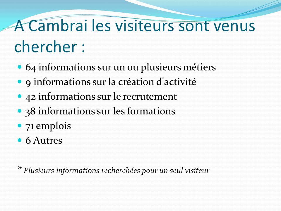 A Cambrai les visiteurs sont venus chercher : 64 informations sur un ou plusieurs métiers 9 informations sur la création d'activité 42 informations su