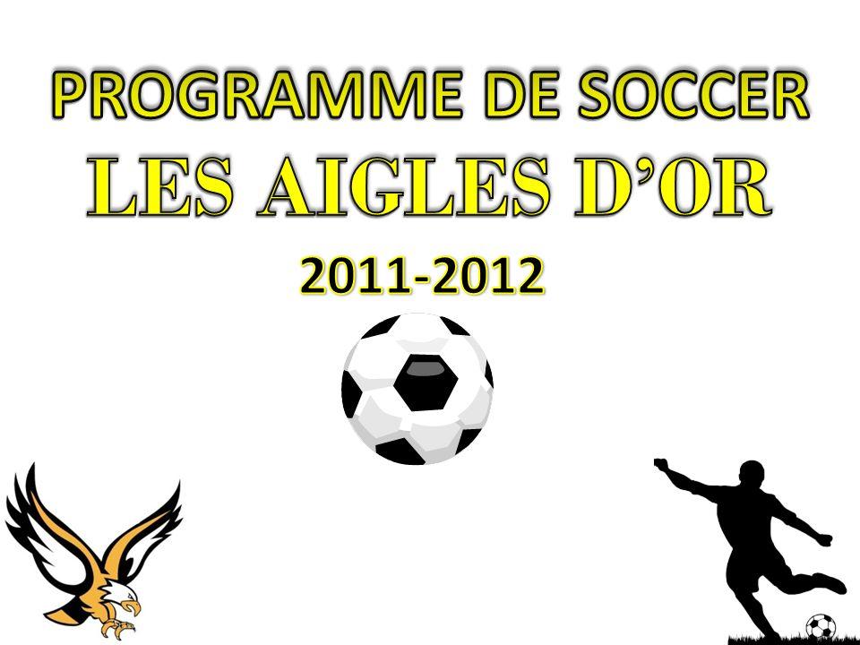Lélève doit être admis dans le Profil sportif de lÉcole Dalbé-Viau pour participer au programme de soccer.