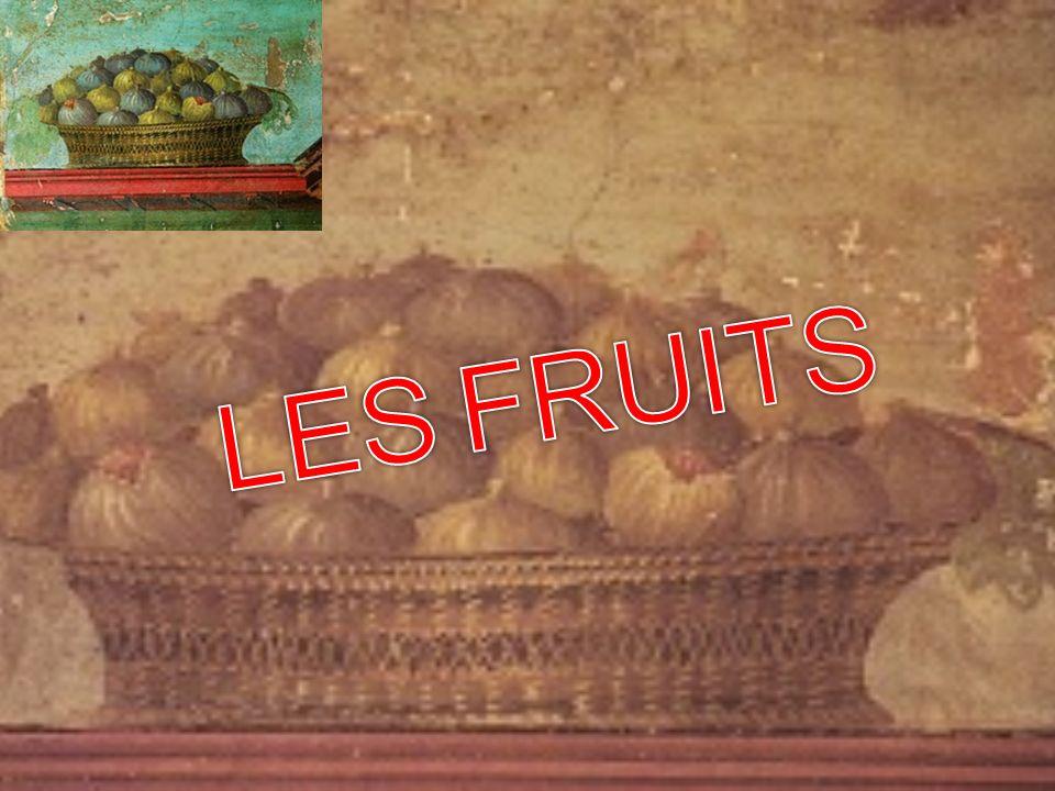 Les Romains étaient des jardiniers exemplaires et ne cesseront jamais dacclimater les fruits découverts lors de leurs conquêtes: La pêche de Perse L abricot dArménie La prune de Damas Les cédrats exportés de Corse Les dattes de Syrie et de lAfrique du Nord