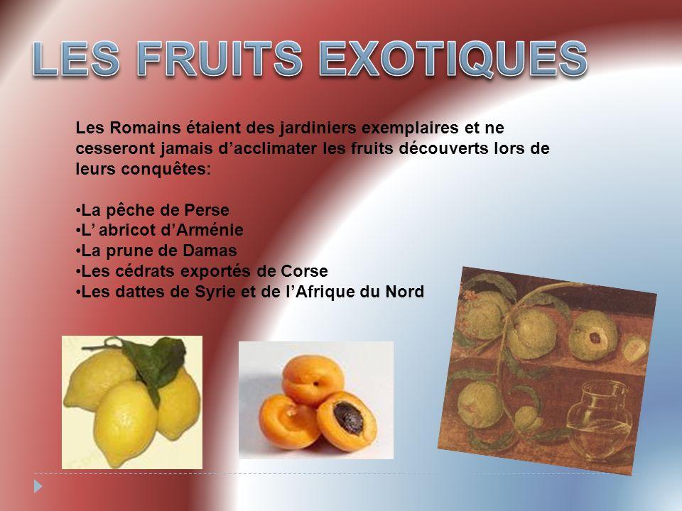 La datte.Les dattes étaient importées de Syrie et dAfrique du nord.