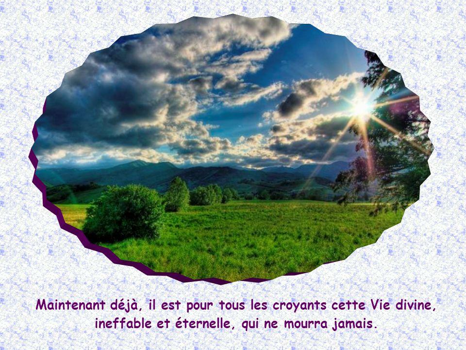 Mais Jésus, par cette affirmation : « Je suis la Résurrection et la Vie », lui fait comprendre quelle ne doit pas attendre lavenir pour espérer en la résurrection des morts.