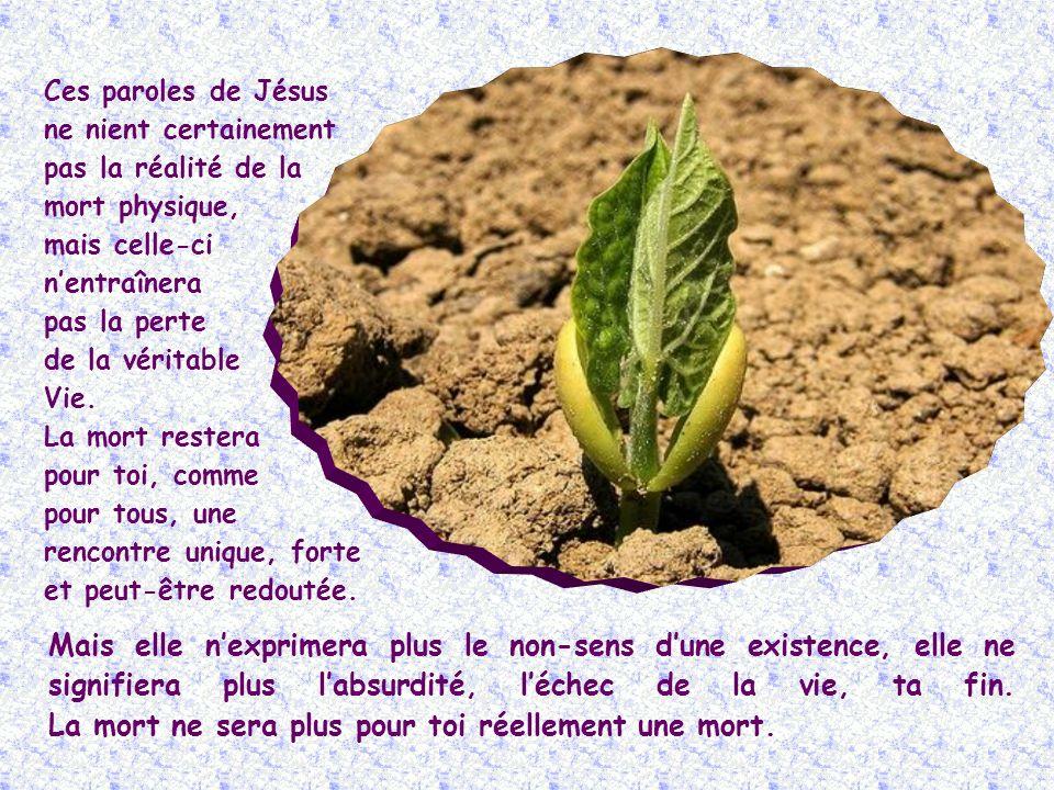 « Je suis la Résurrection et la Vie » (Jn 11,25).