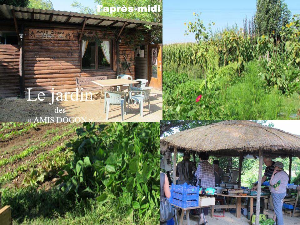 Le jardin des « AMIS DOGON »