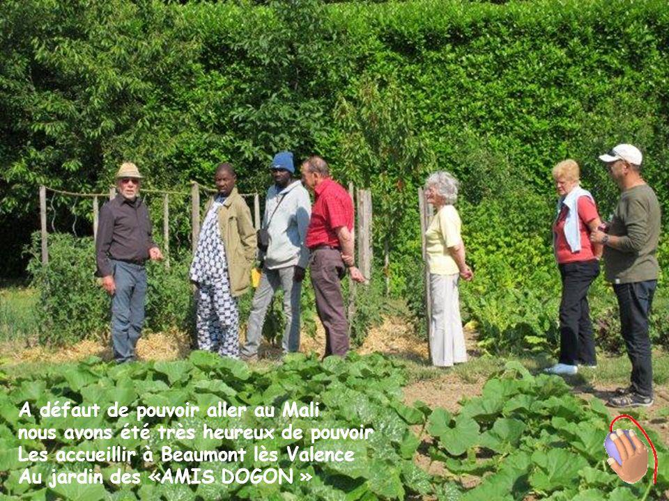 A défaut de pouvoir aller au Mali nous avons été très heureux de pouvoir Les accueillir à Beaumont lès Valence Au jardin des «AMIS DOGON »