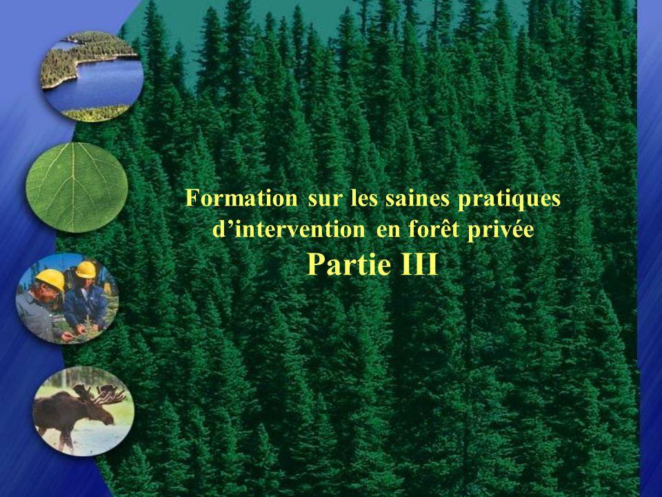 Formation sur les saines pratiques dintervention en forêt privée Partie III