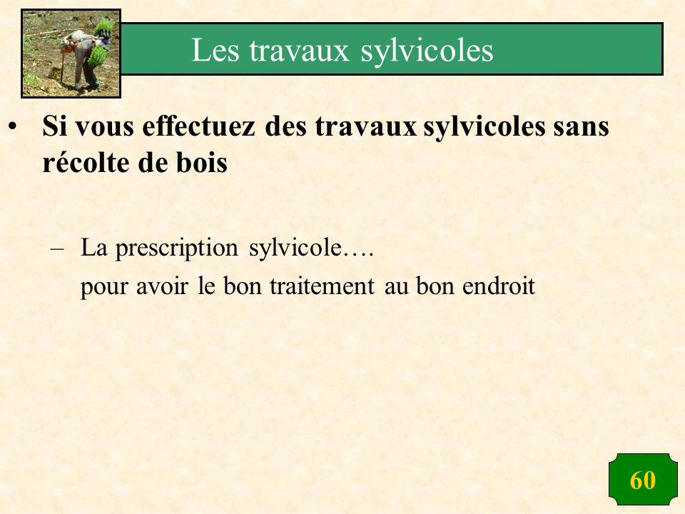 60 Si vous effectuez des travaux sylvicoles sans récolte de bois –La prescription sylvicole…. pour avoir le bon traitement au bon endroit Les travaux