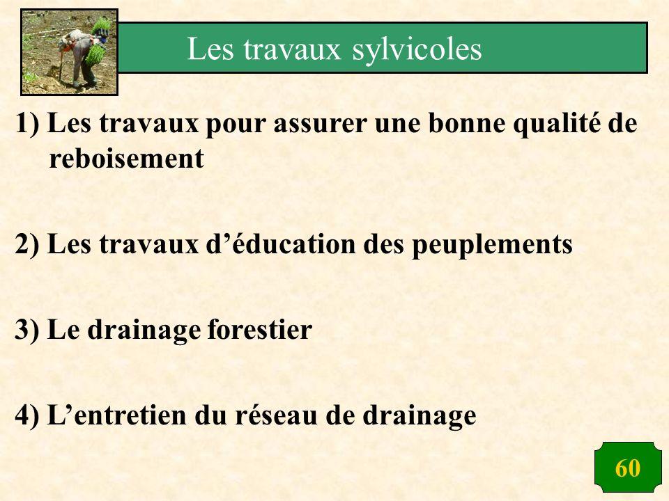 60 1) Les travaux pour assurer une bonne qualité de reboisement 2) Les travaux déducation des peuplements 3) Le drainage forestier 4) Lentretien du ré