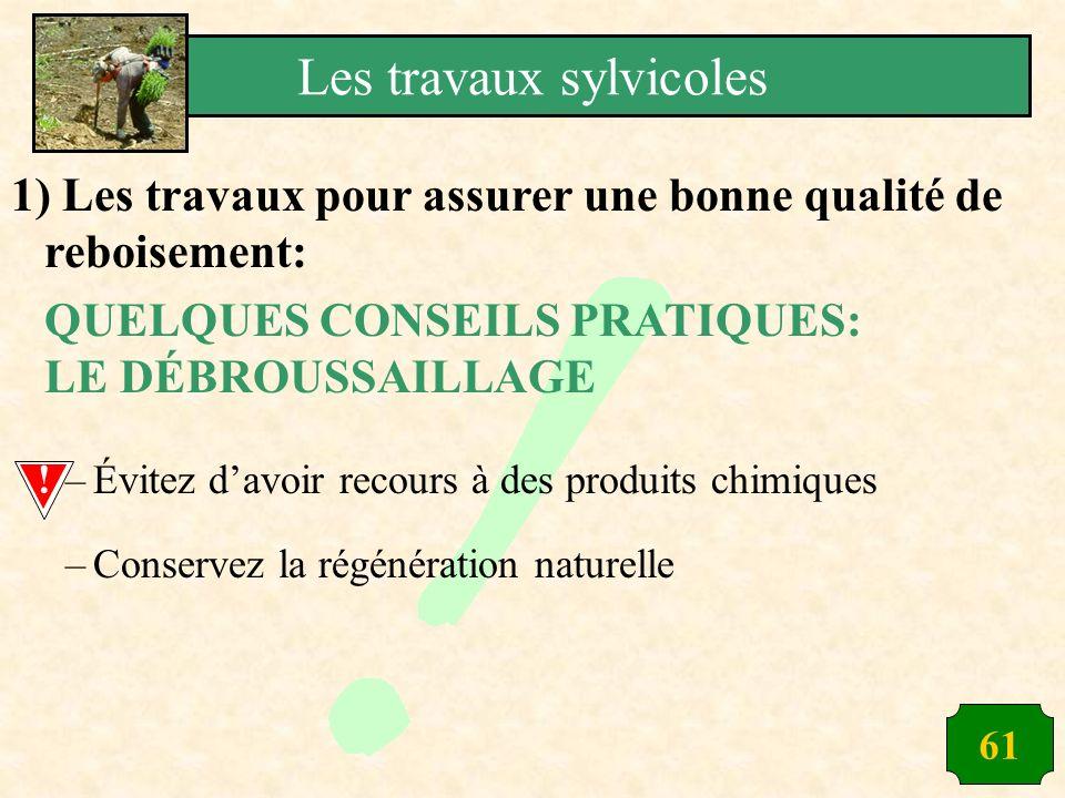 61 1) Les travaux pour assurer une bonne qualité de reboisement: QUELQUES CONSEILS PRATIQUES: LE DÉBROUSSAILLAGE –Évitez davoir recours à des produits