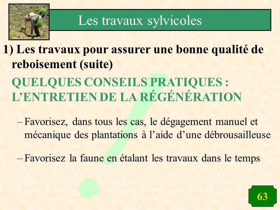 63 1) Les travaux pour assurer une bonne qualité de reboisement (suite) QUELQUES CONSEILS PRATIQUES : LENTRETIEN DE LA RÉGÉNÉRATION –Favorisez, dans t