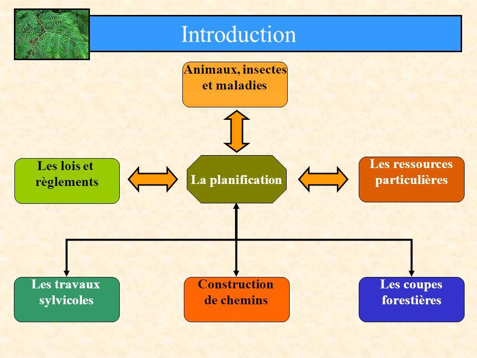 La planification Introduction Animaux, insectes et maladies Les lois et règlements Les ressources particulières Les travaux sylvicoles Construction de