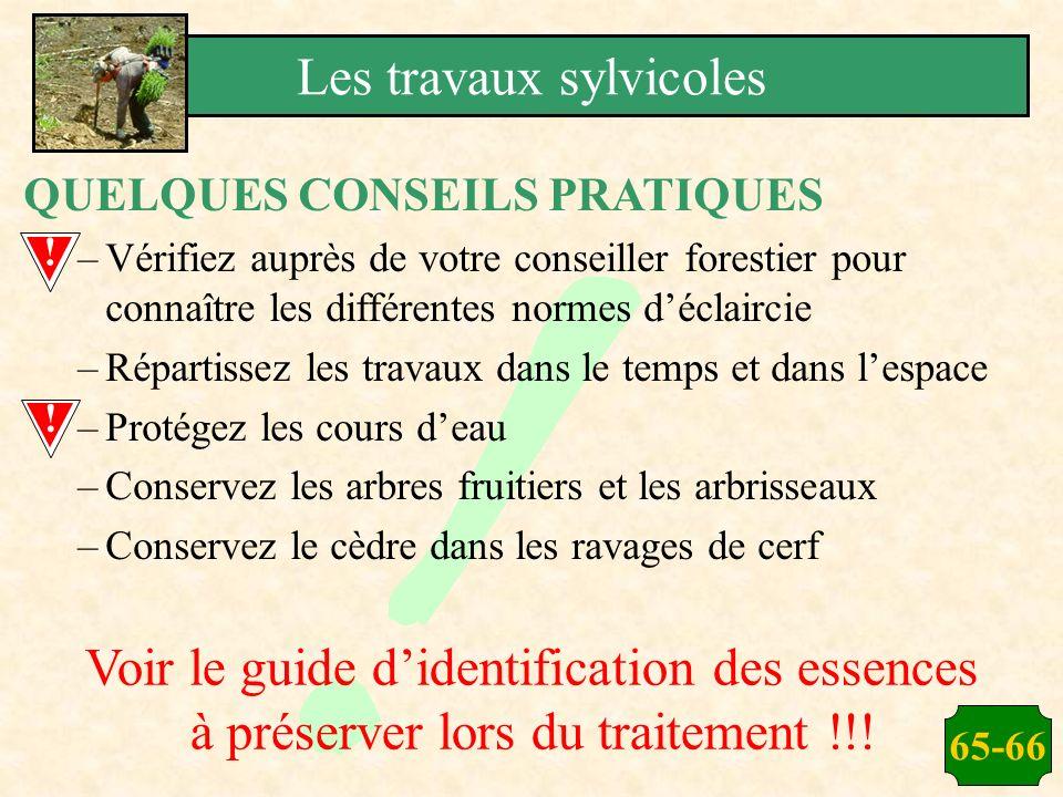 65-66 QUELQUES CONSEILS PRATIQUES –Vérifiez auprès de votre conseiller forestier pour connaître les différentes normes déclaircie –Répartissez les tra