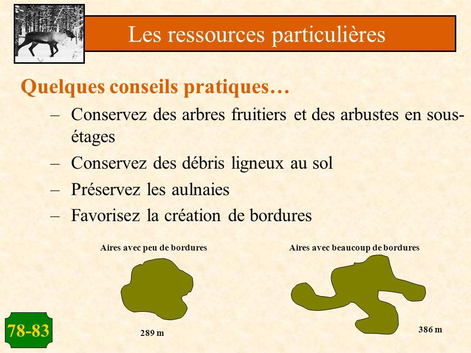 78-83 Quelques conseils pratiques… –Conservez des arbres fruitiers et des arbustes en sous- étages –Conservez des débris ligneux au sol –Préservez les